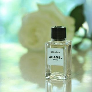 """New in!!  𝗚𝗮𝗿𝗱𝗲𝗻𝗶𝗮𝗯𝘆𝗖𝗵𝗮𝗻𝗲𝗹  White floral with a touch of coconut and vanilla,𝙂𝙖𝙧𝙙𝙚𝙣𝙞𝙖is an airy and elegant scent that doesn't surprise in its composition but in the exquisite blend.  White floral with a touch of coconut and vanilla,𝙂𝙖𝙧𝙙𝙚𝙣𝙞𝙖is an airy and elegant scent that doesn't surprise in its composition but in the exquisite blend.  Gardenia Eau de Parfum, """"an imaginary creation,"""" is an intense and opulent floral fragrance of creamy gardenia. It is described as a feminine fragrance that carries the blinding light of summer. Mademoiselle Chanel liked white flowers, as her emblem was the Camellia flower. Since it has no scent, Gardenia is chosen for its similarities.  𝙂𝙖𝙧𝙙𝙚𝙣𝙞𝙖 Eau de ParfumbyChanelis a Floral fragrance for women launched in 2016.  👉Top note is Green Leaves; 👉Middle notes are Gardenia, Fruity Notes and Coconut; 👉 Base note is Vanilla.  Buy 1ml, 3ml & 5ml samples at lshamanparfums.com  #women #womenfragance #chanel #topfragance #perfumelove #smellgood #originalperfume #samplefirst #fragancestore #instaperfume #fragancereview #fragancecommunity #luxuryfragance #scenteoftheday #lshaman #perfumesamples #shopdecants #decants #perfumedecants #sotd #perfumelover #fragrantica #fragrance #perfume #fragcomm #fragfam #iloveperfume #lshaman #samples #dicoveryset #decants #freeshipping"""